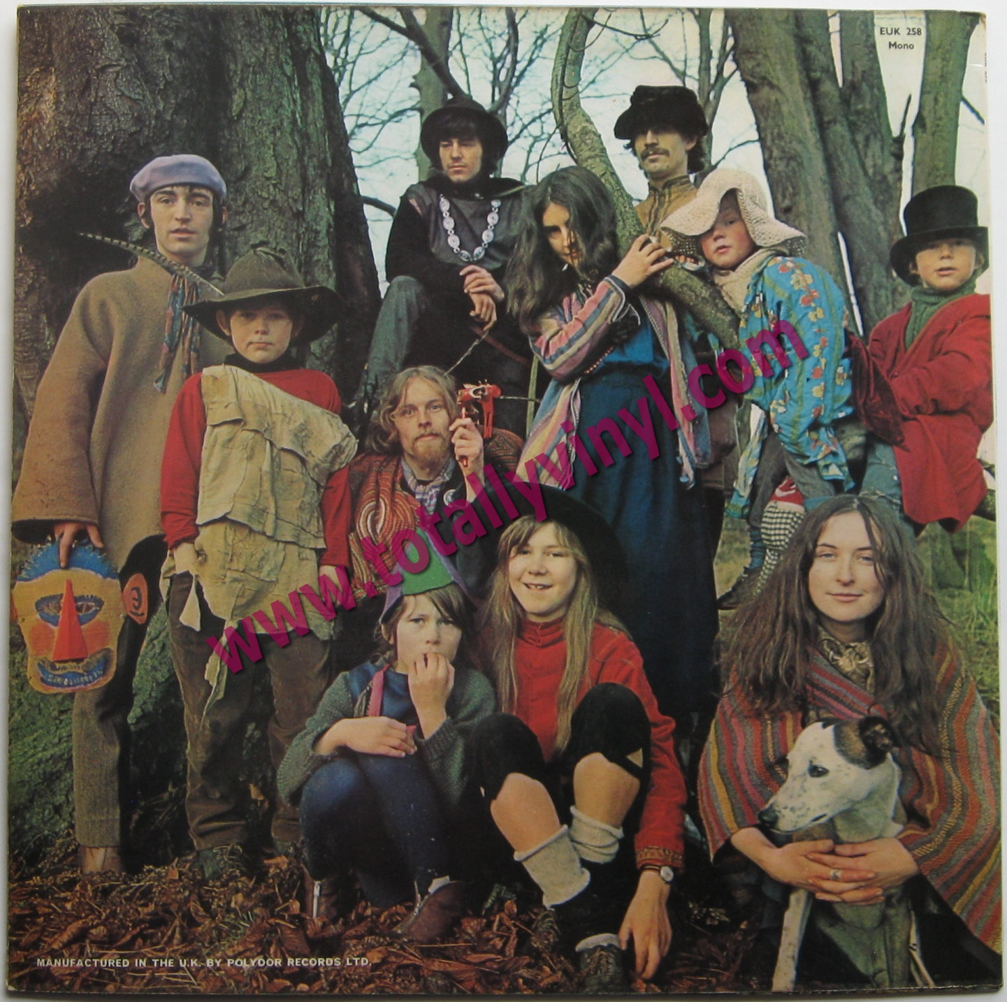 Totally Vinyl Records Incredible String Band The The