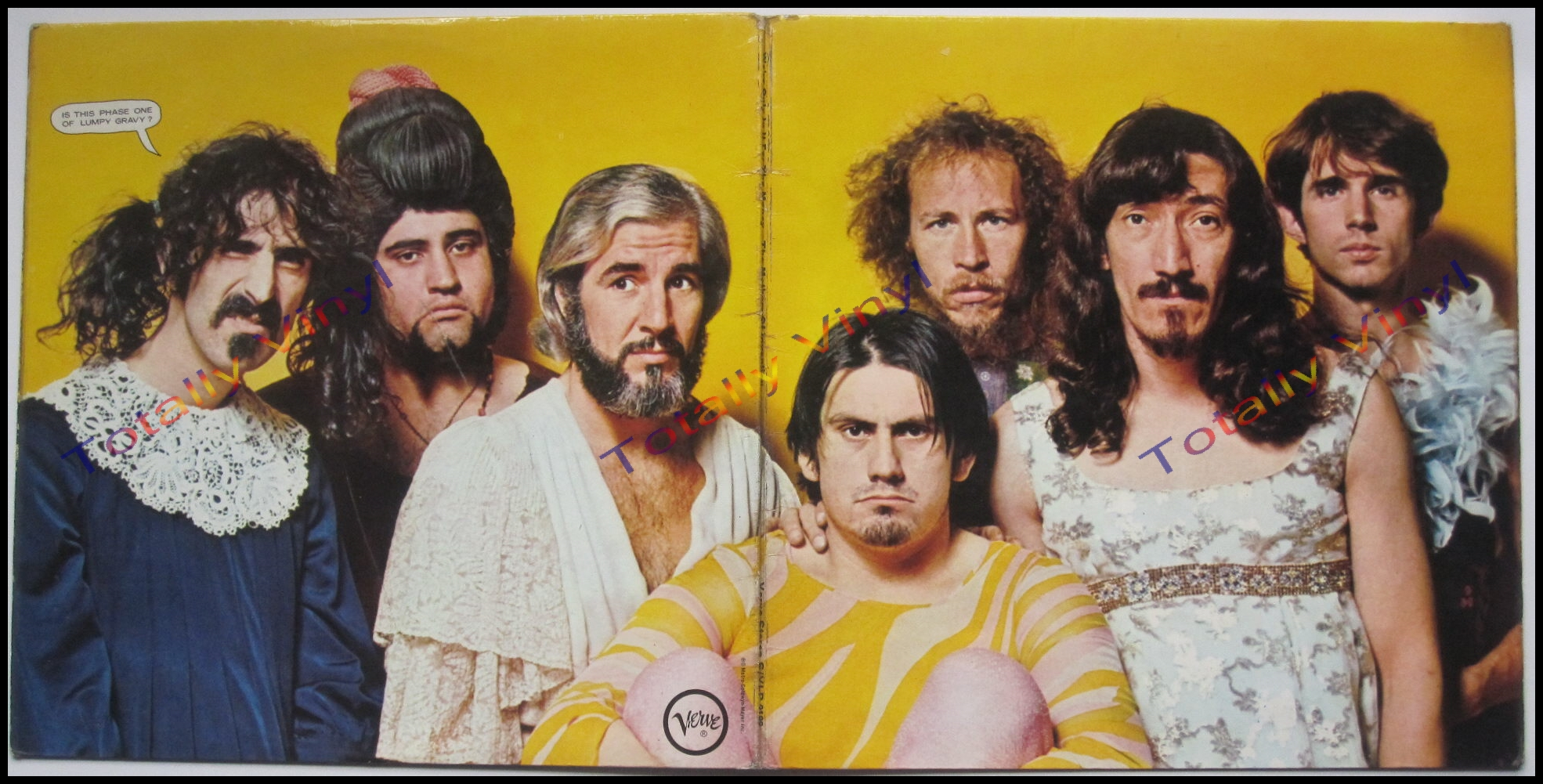 Totally Vinyl Records Mothers Of Invention The We Re