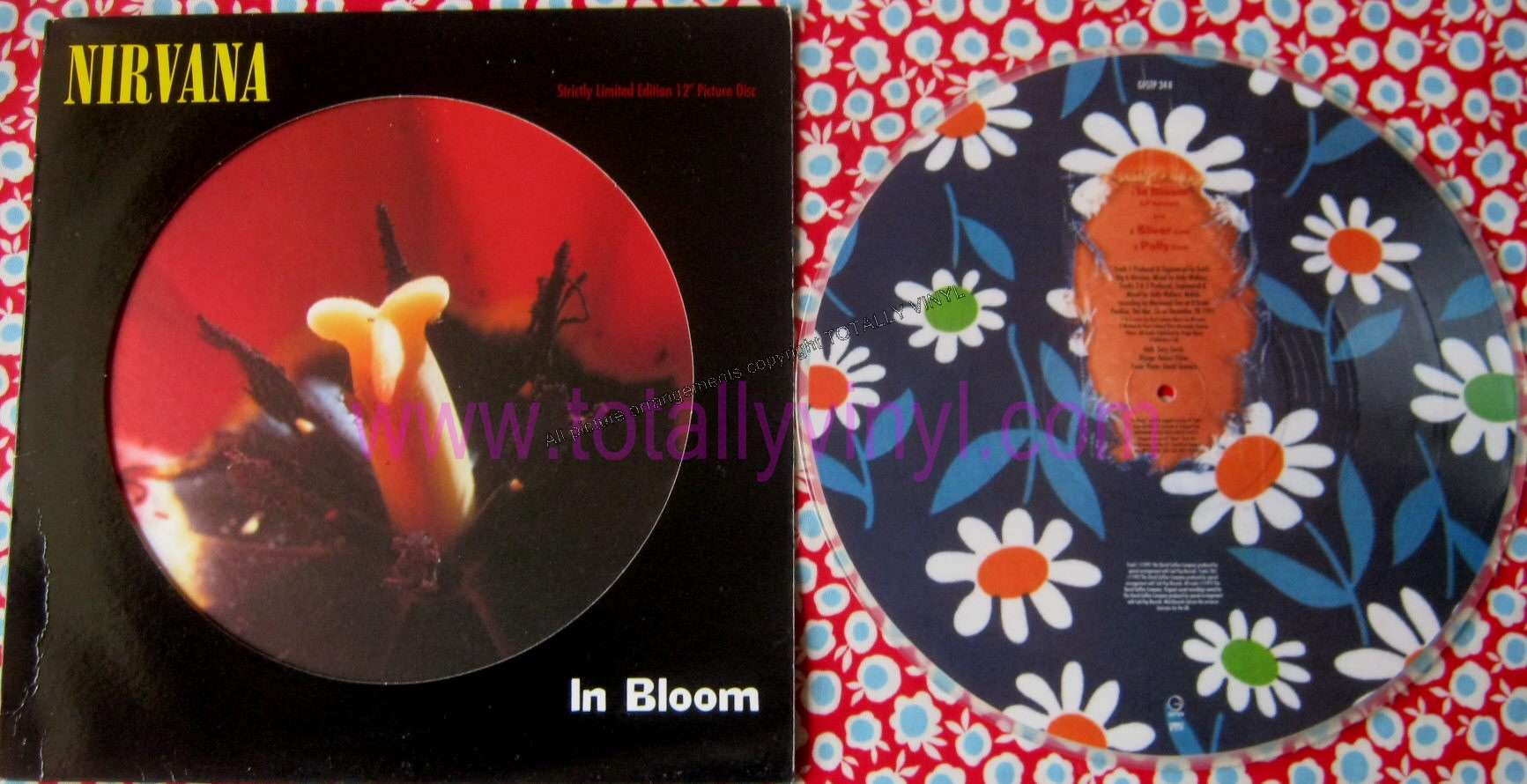 Totally Vinyl Records Nirvana In Bloom Lp Version