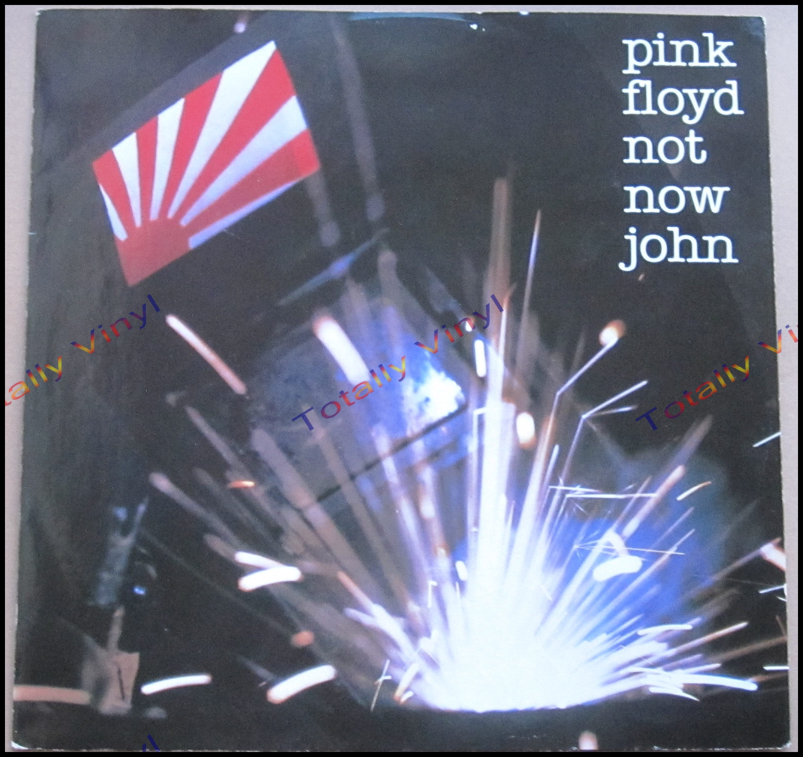 Totally Vinyl Records Pink Floyd Not Now John Single